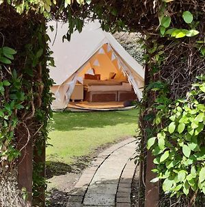 The White Dove Bed And Breakfast And The Garden Bell Tent With Private Hot Tub photos Exterior
