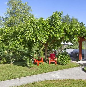 Charming 3 Stars House In The Greenery W Large Garden In Tarnos - Welkeys photos Exterior