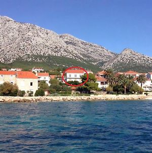 Apartments And Rooms By The Sea Orebic, Peljesac - 4563 photos Exterior