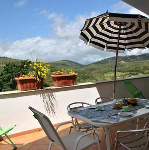 Suite On Hill, Air-Conditioned Apartment In Villa With Outdoor Patio photos Exterior