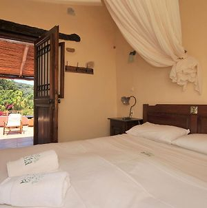 Room In Guest Room - Traditional Hotel - The Oldest Living Olive Tree In The World, photos Exterior