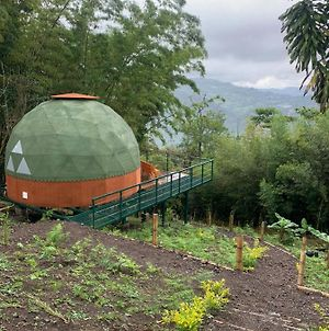 Glamping Y Mini Chalet photos Exterior