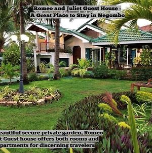 Romeo And Juliet Guest House photos Exterior