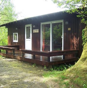 Honeysuckle Lodge Set In A Beautiful 24 Acre Woodland Holiday Park photos Exterior