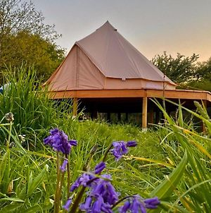Bluebell Bell Tent - 20 Acres Of Natural Beauty photos Exterior