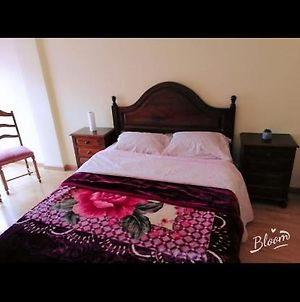 Nice And Peaceful Room To Rent photos Exterior