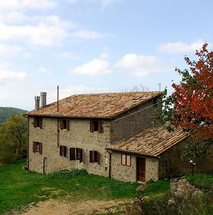 A Stay Surrounded By Greenery - Agriturismo La Piaggia - photos Exterior