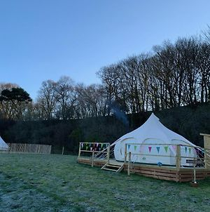 Lovely Spacious Lotus Bell Tent In Shaftesbury Uk photos Exterior