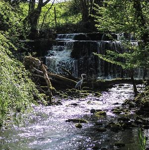 Luxury 2 Bed 5 Mins From Carrick Next To Waterfall photos Exterior