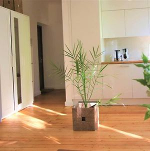 Light, 50M2 Apartment With Magnificent Tree View photos Exterior