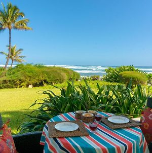 Hanalei Colony Resort I1-Steps To Sand, Oceanfront Views, Wild & Beautiful! photos Exterior