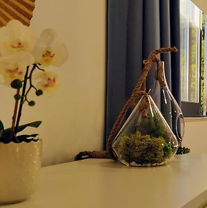 Stylish And Elegant Studio - Best View And Location In Coimbra Downton photos Exterior