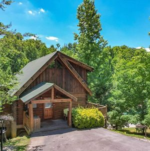 The Wildflower- Experience The Natural Wonder Of The Smoky Mountains! photos Exterior