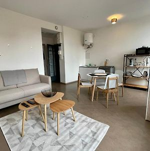 Beautiful 50 M2 Apartment In The Center Of Roanne photos Exterior