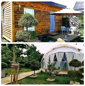 Glamping Dome, Tinyhouses Am Neusiedlersee photos Exterior