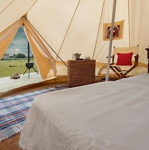 Lyth Valley Back To Basics Camping Experience In The Lake District photos Exterior