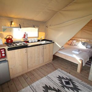 Cosy Glamping Lodge With Hot Tub In Heart Of Snowdonia photos Exterior