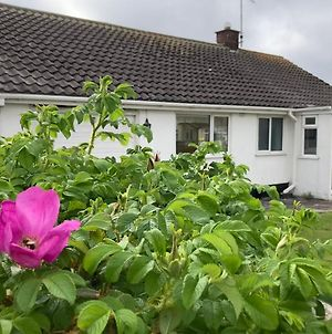Cosy Seaside Holiday Cottage In Fairbourne photos Exterior