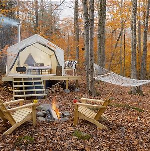 Tentrr Signature Site - Camping In The Woods Of The Berkshires photos Exterior