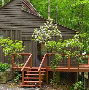Riverside Cabin With Deck By Hiking Trails And Fishing photos Exterior
