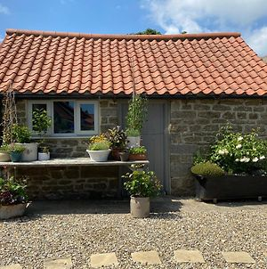 White House Farm - Beautiful Courtyard Rooms - Self-Contained photos Exterior