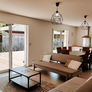New And Designed House With Terrace And Garden photos Exterior