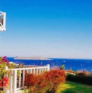 Beautiful Villa In Bodrum Gumusluk For Families And Couples photos Exterior