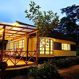 1Bedroom Cottage Adorning A Zen-Like Ambiance Of Luxurious Green Compound With Towering Leafy Trees photos Exterior