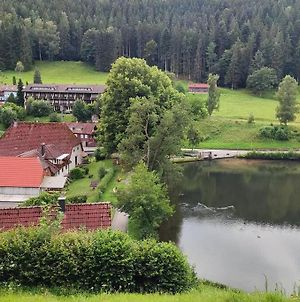 Schwarzwald Appartment Mit Balkon / Black Forrest Appartment With Own Balcony photos Exterior