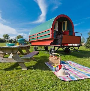 Super Small Spaces Cosy Accommodation By The Meadow photos Exterior