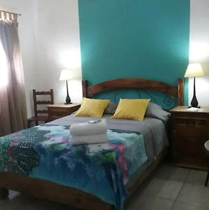 Cozy Room With Private Bathroom To 12 Minutes Walking From Downtown photos Exterior