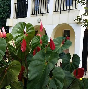 The Towner'S - Homestay Arusha photos Exterior