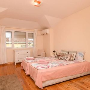 Spacious And Cozy 3 Bedroom Apartment In Downtown Sofia photos Exterior