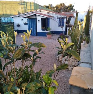 House With One Bedroom In Bellvei With Wonderful Mountain View Shared Pool And Enclosed Garden 6 Km From The Beach photos Exterior