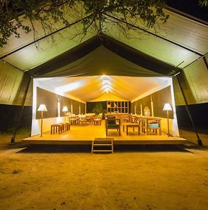 Yala Hotel Lion - Air Conditioned Luxury Tented Safari Camp photos Exterior