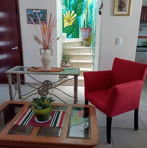 Complete Cozy House In Zacatecas City For 4 Persons The House Of Plants photos Exterior