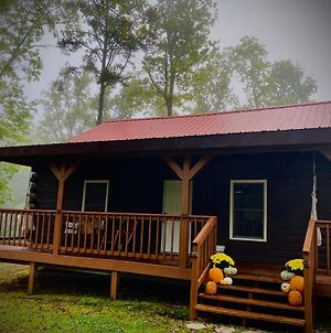 The Willow Cozy And Comfy Cabin Short Scenic Drive From Natural Bridge State Park Red River Gorge Hollerwood Boneyard Atv Park And Ky Dragway photos Exterior