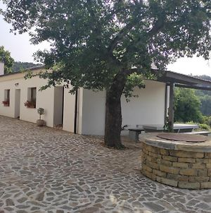 2-Bedroom Holiday Home In Park Istra photos Exterior