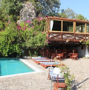 Room In Bb - Big Double Room Natural Conservation Area, Boutique Hotel With Pool photos Exterior