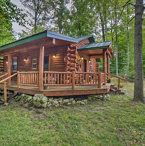 Updated Manistique Log Cabin, Yard And Fire Pit photos Exterior