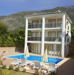 Orka Olivia Gold Villas photos Room