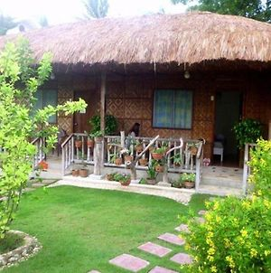 Oslob Garden Stay Beach Resort photos Exterior