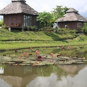Pai Backpackers Paradise (Adults Only) photos Exterior