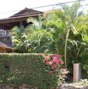 Maui What A Wonderful World Bed & Breakfast photos Exterior
