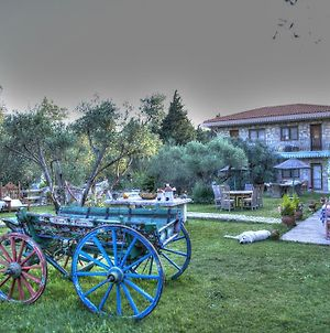 Olive Farm Of Datca Guesthouse (Adults Only) photos Exterior