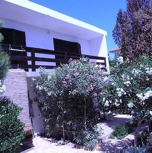 House With A Garden 50M From The Sea photos Room