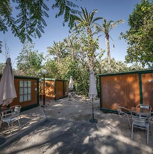 Camping Las Palmeras photos Room