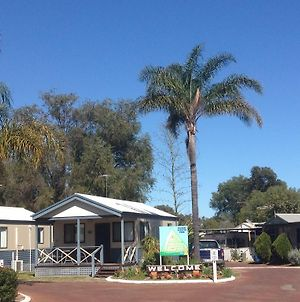 Pinjarra Caravan Park And Cabins photos Exterior