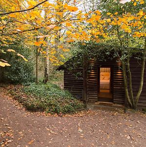 Pinetum Lodge photos Room