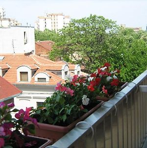 One Bedroom Apartment Dorcol Live photos Exterior